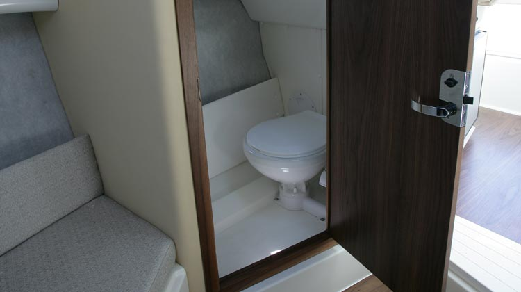 Marine toilet with holding tank